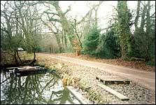 Fishers Pond Dam